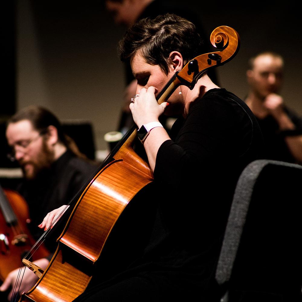 Stort utvalg av celloer på nett